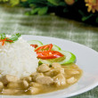 Chicken in gravy sauce rice — Stock Photo
