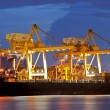 Cargo Ships at dusk — Stock Photo