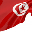 Flags of Tunisia — Stock Photo