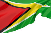Vector Flags of Guyana — Stock Photo