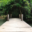 Old wooden brige — Stock Photo