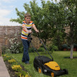Young  gardener - Stock Photo