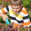 Stock Photo: Young gardener