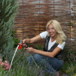 Stock Photo: Working in garden