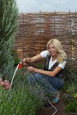Working in the garden — Stock Photo