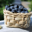 Blueberry — Stock Photo #11346481