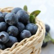 Blueberries closeup — Stock Photo