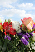 Flowers in the sky — Stock Photo