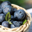 Blueberries in wicker basket — Stock Photo