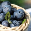 Blueberries in wicker basket — Stock Photo #11385309