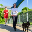 Couple running with dog across the bridge — Stock Photo