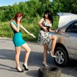 Two women are changing a tire on a road — Stock Photo #11327643