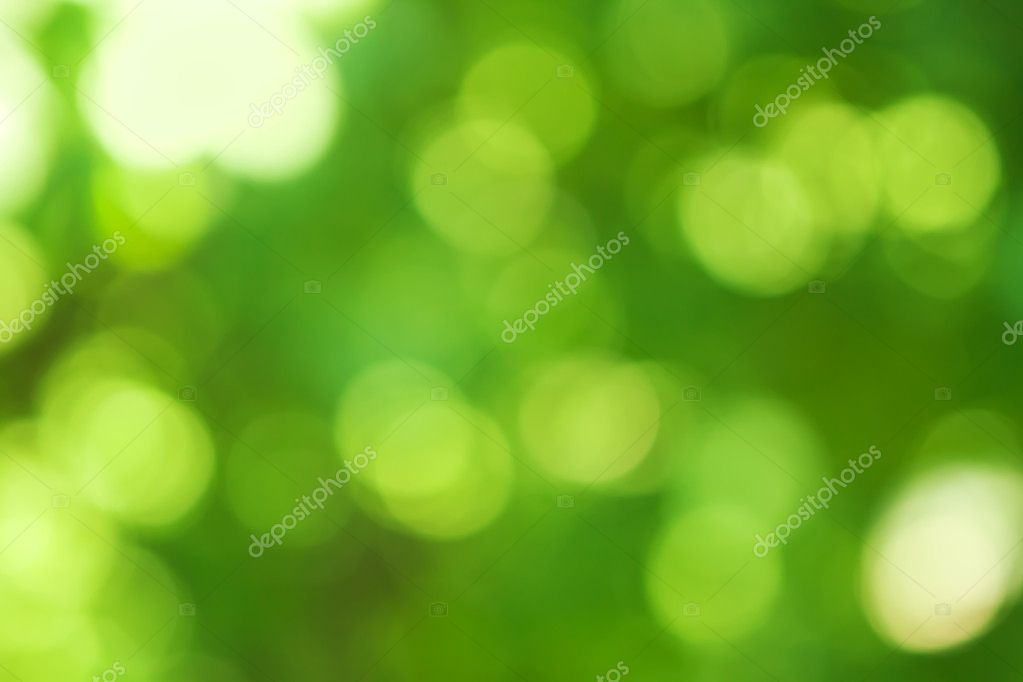 Blurred spring natural background in green colors  Lizenzfreies Foto #11317277