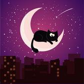 Cat on moon — Stock Vector