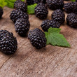 Blackberries — Stock Photo #12125393