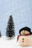 Snowman — Photo