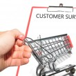 Stock Photo: Customer survey