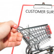 Royalty-Free Stock Photo: Customer survey
