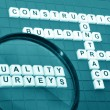 Stock Photo: Quality surveying concept