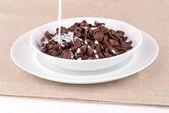 Chocolate cereal with milk. — Zdjęcie stockowe