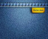 Vector jean fabric — Stock Vector