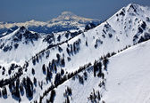 Snowy Mount Saint Adams and Ridge Lines Washington — Stock Photo