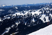Sking Chairlift Snow Ridges Crystal Mountain — Stok fotoğraf