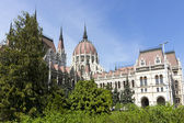 Budapest parliament in trees — Stock Photo
