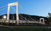 Elizabeth Bridge, Budapest — Stock Photo