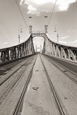 Liberty Bridge in Budapest — Stock Photo