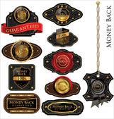 Conjunto de etiquetas vintage de cuero trasera dinero — Vector de stock