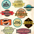 Stock Vector: Vintage Labels Collection - Best Quality