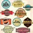 Vintage Labels Collection - Best Quality — Stock Vector