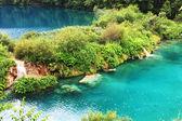 Plitvice lake with magic colors — Stock Photo