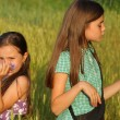 Two young girls playing outdoor — Foto Stock