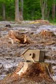 Birdhouse on the stump — Stock Photo