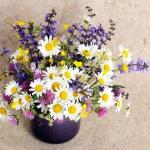 Bunch of wildflowers — Stock Photo