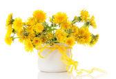 Vase with dandelions — Stock Photo