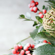 Christmas background — Stock Photo #11138172