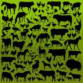 Farm animals detailed silhouettes illustration collection backgr — Stock Vector