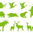 Ecology forest animal vector set background — Stockvektor