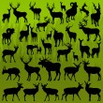 鹿、ヘラジカ、山羊の角のある動物のベクトル — ストックベクタ