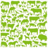 Boerderij dieren gedetailleerde silhouetten achtergrond vector — Stockvector