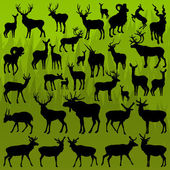 Deer, moose and mountain sheep horned animals vector — Stock Vector