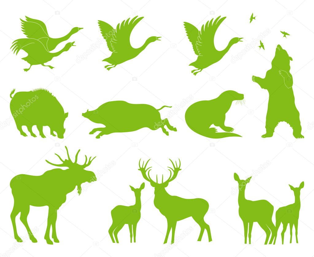 Ecology forest animal vector set background for poster — Stock Vector #11461814