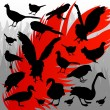 Royalty-Free Stock Imagen vectorial: Forest hunting bird silhouettes illustration background vector