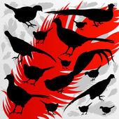 Pheasant bird hunting season silhouettes illustration background — Stock Vector