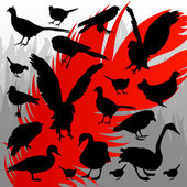 Forest hunting bird silhouettes illustration background vector — Stock Vector