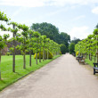 Rufford Park Abbey and Gardens — Stock Photo