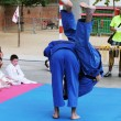 Stock Photo: Judo exhibition